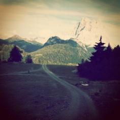 La strada silvopastorale e il Pelmo sullo sfondo